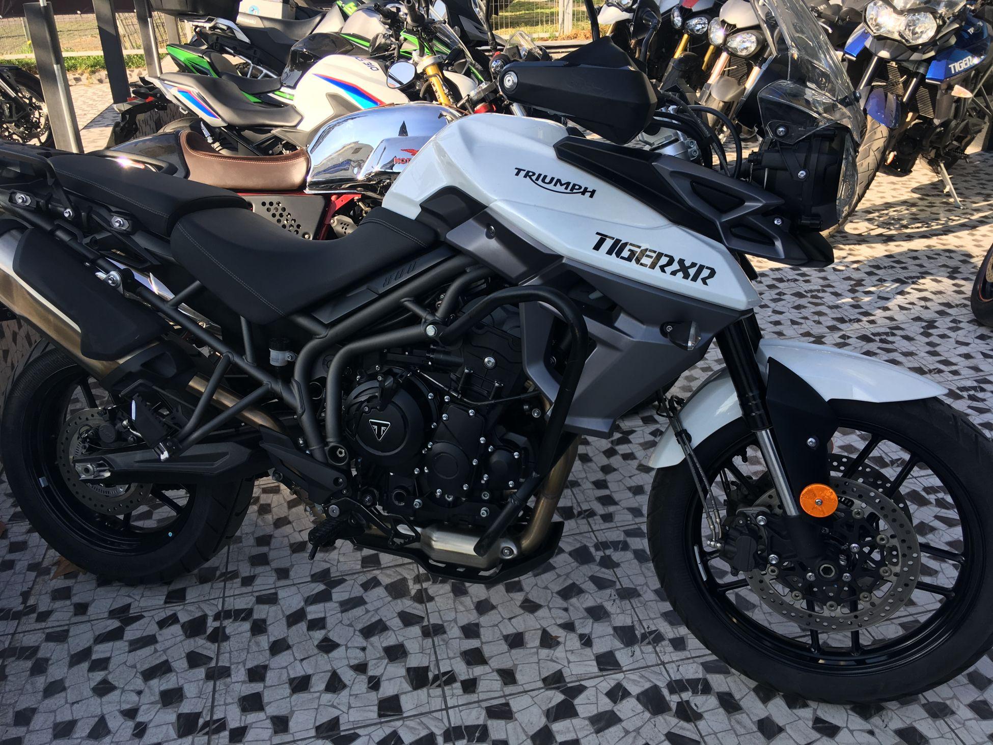 TIGER 800 XR